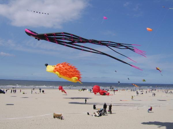 Fête des cerf-volants à Berck-sur-mer